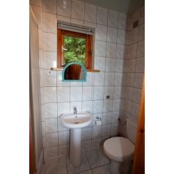łazienka na parterze - Kliknięcie spowoduje wyświetlenie powiększenia zdjęcia